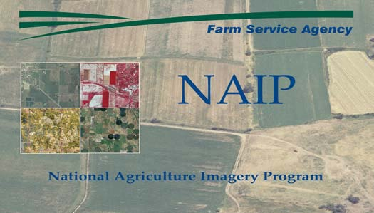 Screenshot of the National Agriculture Imagery Program Website